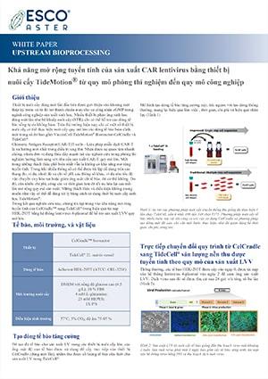 Linear Scalability of CAR Lentivirus Production - VN