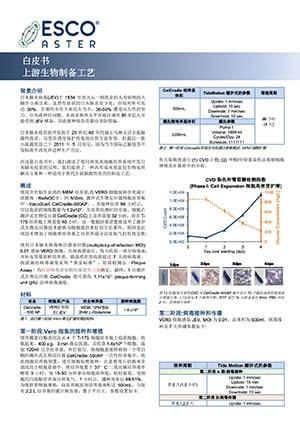 Propagation of Japanese Encephalitis Virus (JEV) in VERO for Vaccine Production - CN